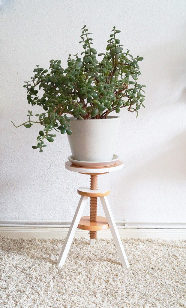 Stool as a Plant Stand