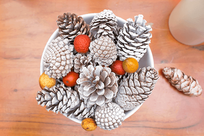 Simple Fall Pinecone Bowl Decor