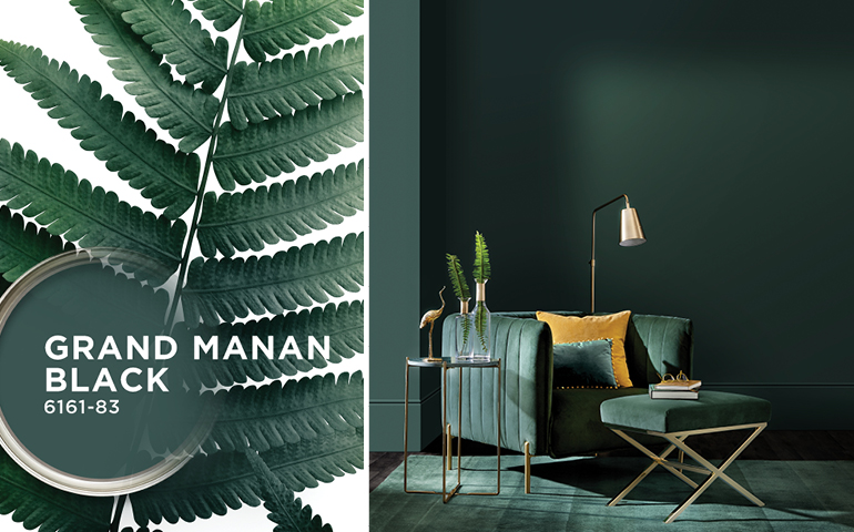 Sico Grand Manan Black 6161-83 Colour of the year 2019