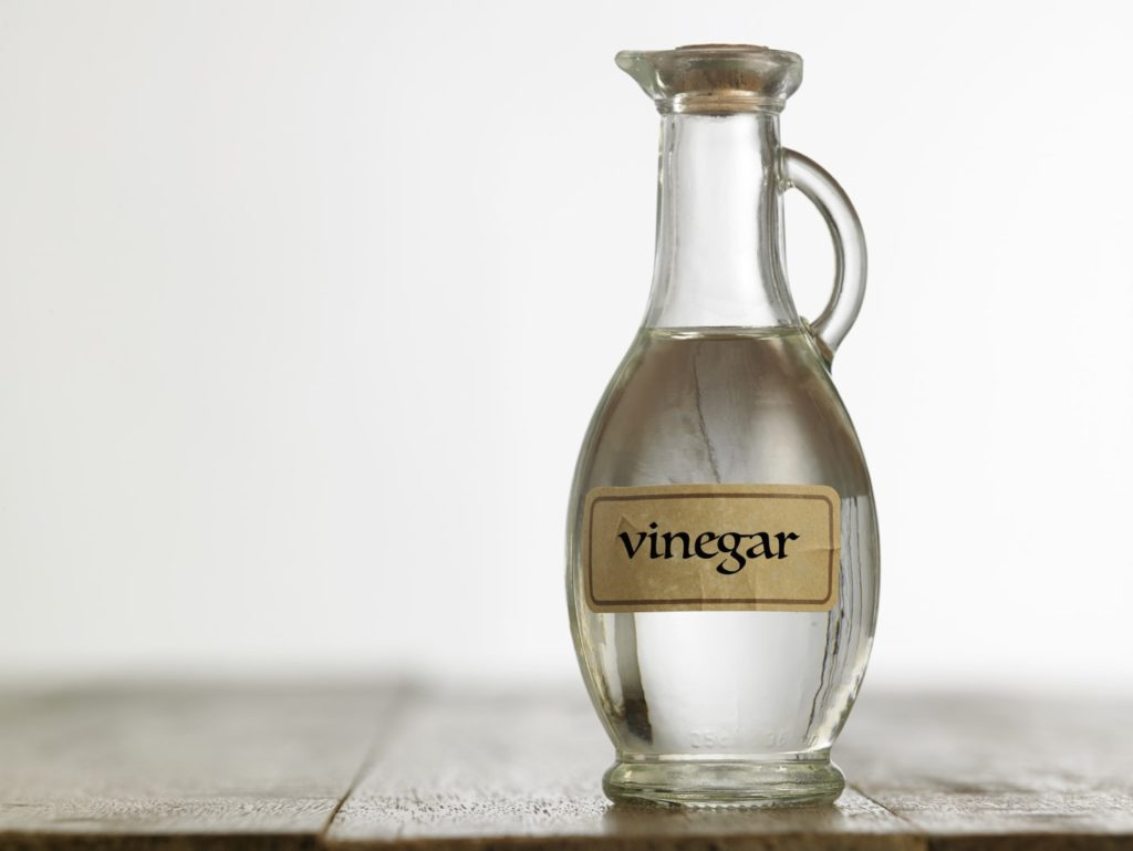 Use vinegar to clean a smelly dishwasher
