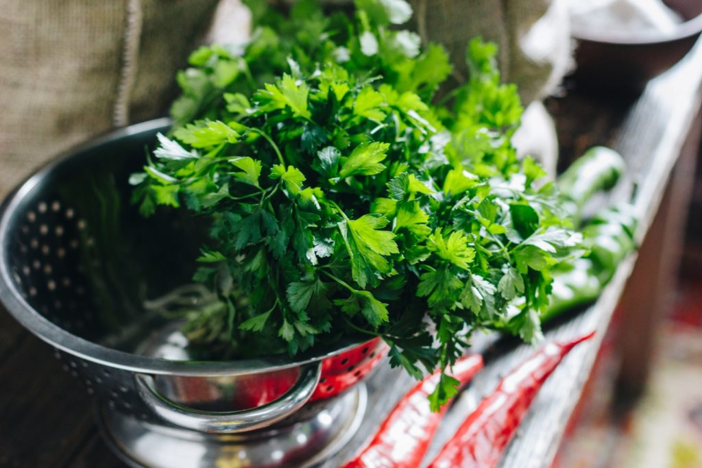 Storing fresh herbs like cilantro properly